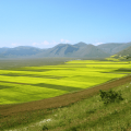 i monti sibillini castelluccio1 800x540 1 optimized