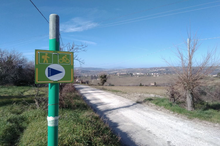 Cupramontana: The path of the friars - blue